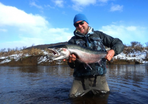 steelhead, kamchatka, dreamfish, ken from elsass