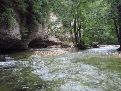 traun river.JPG