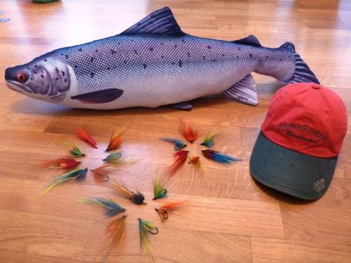 dreamfish, saumon  , russie , kola