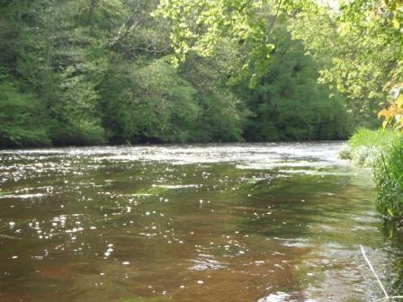 riviere web.JPG