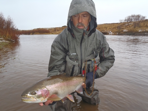 steelhead, kamchatka, dreamfish, ken from elsass, spey cast