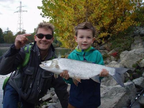 dreamfish,pêche mouche,leurres,rhin